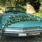 Sehr außergewöhnlich: WILD WEDDING. Individualschriftzug XXL, Preis auf Anfrage (Sonderwunsch)